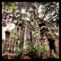 Beng Mealea, Siem Reap, Cambodia.